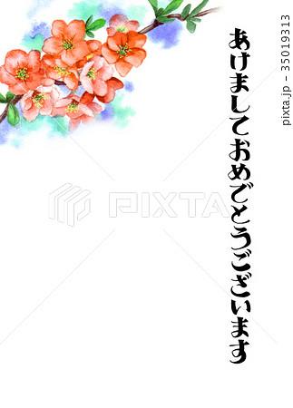 木瓜の花の賀詞入り年賀ハガキ素材 35019313