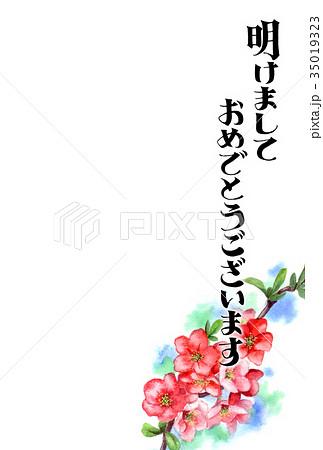 木瓜の花の賀詞入り年賀ハガキ素材 35019323