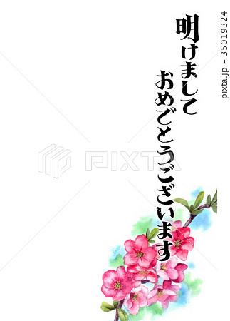 木瓜の花の賀詞入り年賀ハガキ素材 35019324