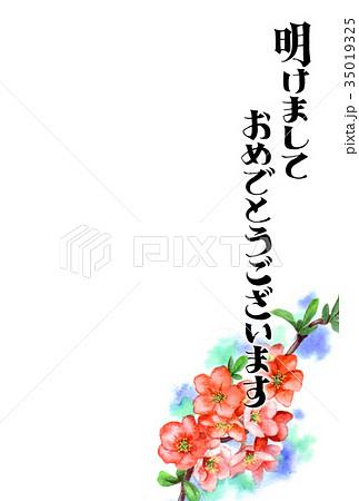 木瓜の花の賀詞入り年賀ハガキ素材 35019325