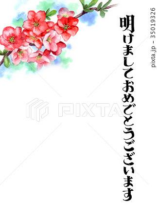 木瓜の花の賀詞入り年賀ハガキ素材 35019326