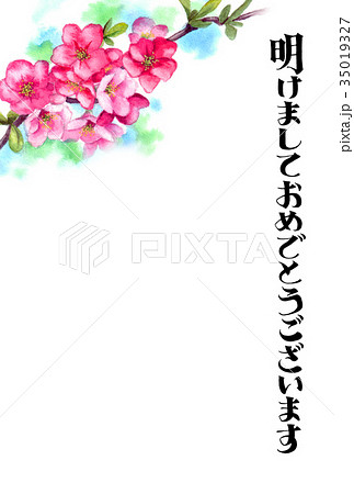 木瓜の花の賀詞入り年賀ハガキ素材 35019327