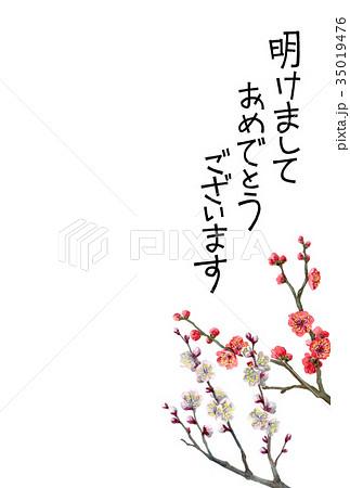 紅白梅の賀詞入り年賀ハガキ素材 35019476