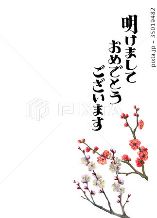 紅白梅の賀詞入り年賀ハガキ素材 35019482
