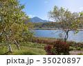 白樺湖 秋 湖の写真 35020897