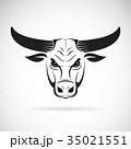 雄牛 頭 動物のイラスト 35021551
