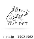 Vector group of pets. 35021562