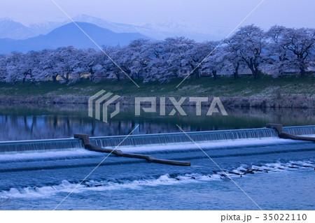 韮神堰、大河原町、一目千本桜、白石川 35022110