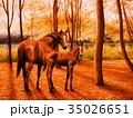 馬 親子 動物のイラスト 35026651