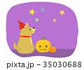 ハロウィン(犬とカボチャ).jpg 35030688