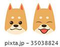 犬 顔 柴犬のイラスト 35038824