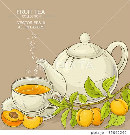apricot tea illustration 35042242