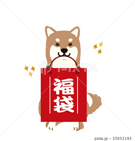 柴犬 福袋 イラスト 35052193