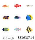サカナ 魚 魚類のイラスト 35058714