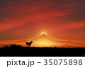 犬 戌 富士山のイラスト 35075898