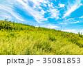 草原 土手 青空の写真 35081853