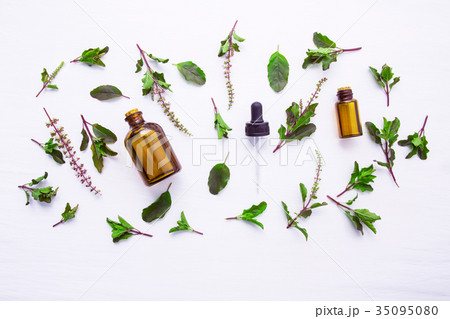 Holy Basil Essential Oil in a Glass Bottle  35095080