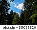 神社から眺める青空、木々の木漏れ日 35095820