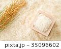 米 白米 コシヒカリの写真 35096602