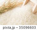 米 白米 コシヒカリの写真 35096603