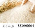 米 白米 コシヒカリの写真 35096604