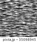 35098945