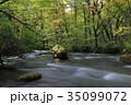 秋 川 渓流の写真 35099072
