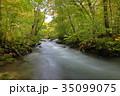 秋 川 渓流の写真 35099075