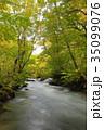 秋 川 渓流の写真 35099076