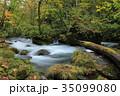 秋 落ち葉 川の写真 35099080