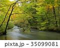 秋 川 渓流の写真 35099081