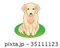 犬 35111123