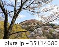 吉野山 桜 春の写真 35114080