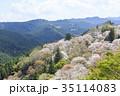 吉野山 桜 春の写真 35114083