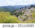 吉野山 桜 春の写真 35114085