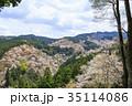 吉野山 桜 春の写真 35114086