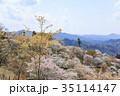 吉野山 桜 春の写真 35114147