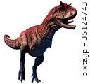 立体 3D 3Dのイラスト 35124743