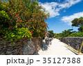 離島 竹富島 八重山の写真 35127388