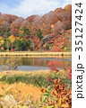 八幡平 紅葉 風景の写真 35127424