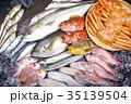 魚 素材 35139504