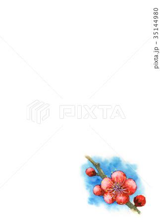 紅梅の年賀ハガキ素材 35144980