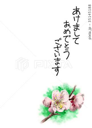 白梅の賀詞入り年賀ハガキ素材 35145188