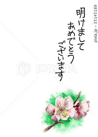 白梅の賀詞入り年賀ハガキ素材 35145189