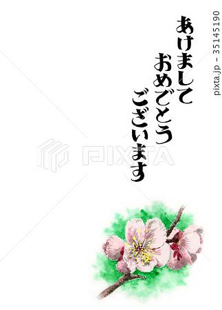 白梅の賀詞入り年賀ハガキ素材 35145190