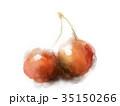 さくらんぼ フルーツ 果物のイラスト 35150266