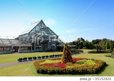 清水公園、花ファンタジアのグラスハウスと花壇(10月)千葉県野田市 35152820