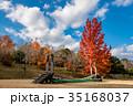 三重県民の森 遊具 フウの写真 35168037