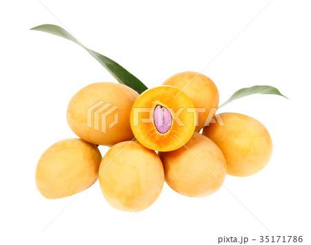 Sweet Marian plum thai fruit isolated on whiteの写真素材 [35171786] - PIXTA