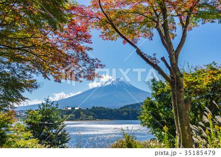 【山梨県】秋の富士山 35185479